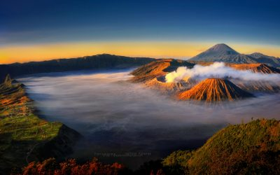 MIDNIGHT BROMO
